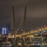 Мост. г. Владивосток :: cosmos-27