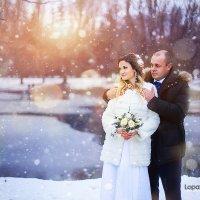 Зима! :: Юлия Лопатченко