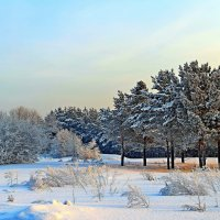 Из  зимнего... :: Vlad Borschev