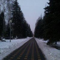 Парк :: Мария Владимирова