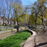 парк :: Юлия Гичкина