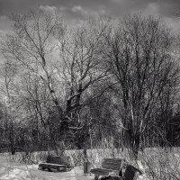 Предчувствие весны :: Юрий Клёнов