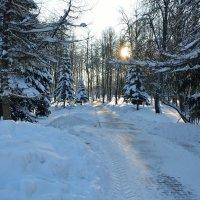 Зимний этюд 33 :: Константин Жирнов