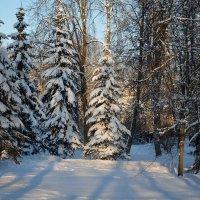 Зимний этюд 34 :: Константин Жирнов