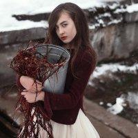 Зимние краски :: Илья Степанов