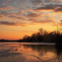 Зимний пейзаж :: Оксана Лада