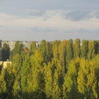 а из нашего окна осень юная видна :: tgtyjdrf