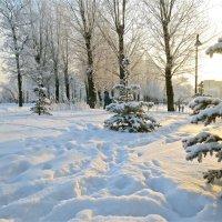 завалило снегом парк :: Елена