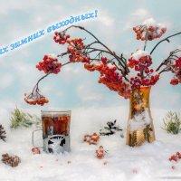 Чудесного зимнего настроения на выходные! :: Игорь Сарапулов