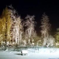 На зимнем пруду... :: Николай Дони