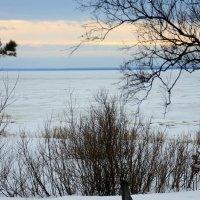Белое море :: Светлана Ку