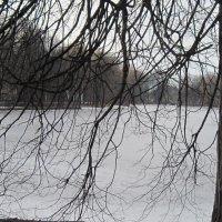 В парке февраль. :: Маера Урусова