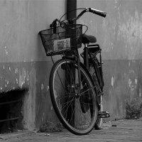 Одиночество. :: Leonid Volodko
