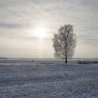 Одиночество :: Олег Пученков
