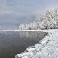 Начало зимы :: Ирина Корпачева