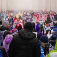 Всероссийская лыжня :: Евгений Евгений