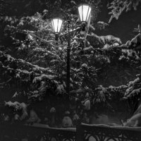 Фонарь в парке :: Александр Шишин