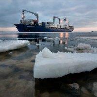 Финский залив :: Алексей Говорушкин