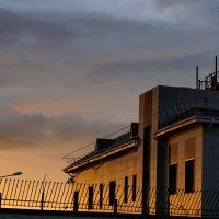 Закатное золото :: Андрей Майоров