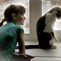 Девочка и кот. :: Евгений Житников