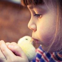 этот маленький мир :: Ольга Кучаева