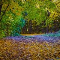 Осенний парк :: Георгий Морозов