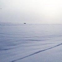 Человек с парашутом-крылом :: Евгения Латунская