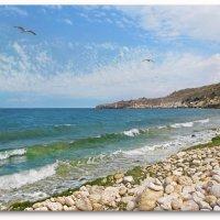 Морской пейзаж :: Эля Юрасова