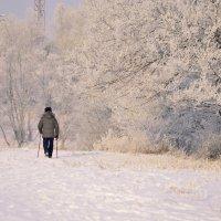 Скандинавская ходьба :: galina tihonova