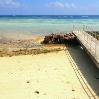 На берегу Индийского океана. Маэ, Сейшелы :: photobeginner khomyakov