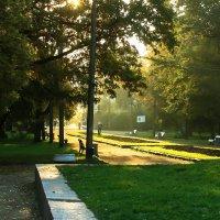 Рассвет в парке :: Валерий Смирнов