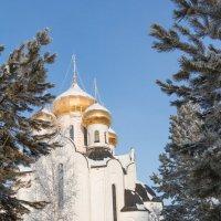 Дорога ведущая к Храму :: Андрей Кузнецов
