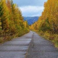 Дорога в осень :: Татьяна Соловьева