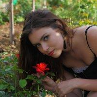 Аленький цветочек :: М. Дерксен Derksen