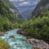 В горах Абхазии :: Natalia Furina