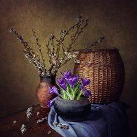 Из серии Весна старого чугунка :: Ирина Приходько
