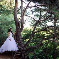 Невеста :: Евгений Грибуцкий