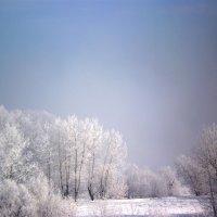 Мороз отступил. :: Андрей