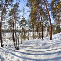 остров на озере :: Натали Акшинцева