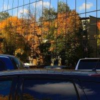 Городские окна.... Осень. :: Валерия  Полещикова