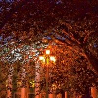 Ночная Ялта :: Marina Timoveewa