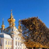 Верхний сад в Петергофе :: Наталья Копылова