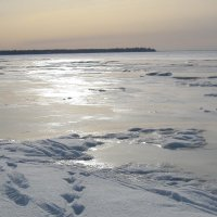 Финский залив. Февраль :: Маера Урусова
