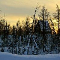 Домик в лесу... :: Витас Бенета
