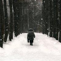 Снегопад :: Сергей Добрыднев
