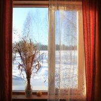 У окна. :: ВИКТОРИЯ Т