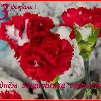 С наступающим праздником. :: nadyasilyuk Вознюк