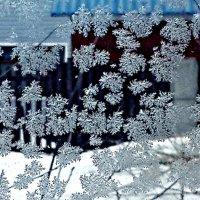 Мороз рисует на стекле снежные узоры! :: Михаил Столяров