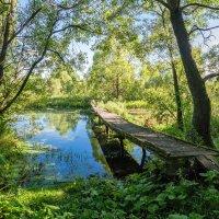 Не забыть мне это лето :: Юрий Морозов