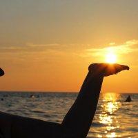 солнце  в ладошке :: Алла Лямкина
